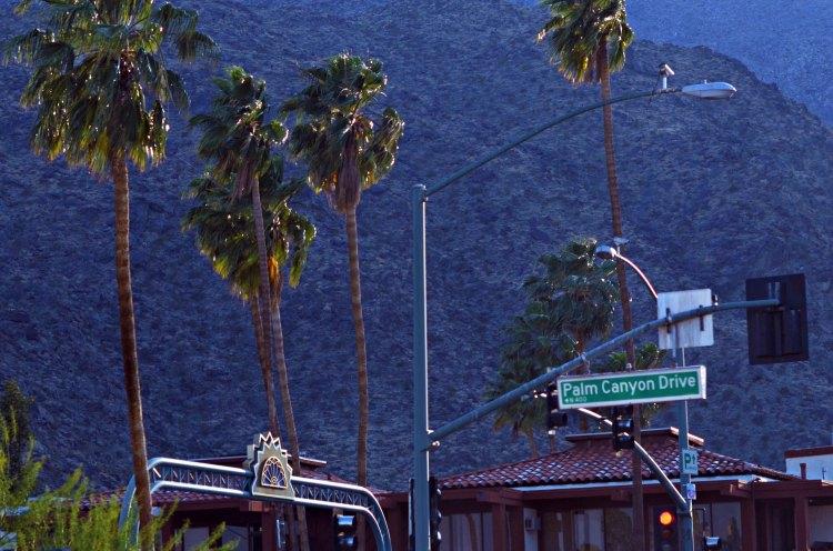 13 coachella 10third blogger fashion california palm springs prada chiara ferragni