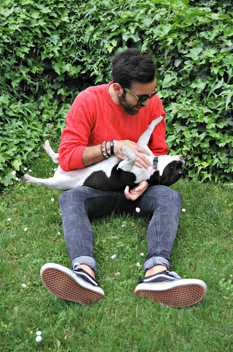 03 10third fashion italian blogger super h&m skinny vans puppy doggie french bulldog